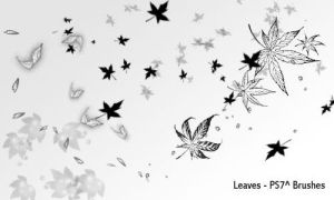leaves by screentones