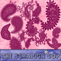 ScrappinCop Beautiful Paisleys by debh945