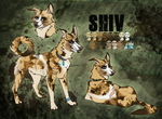 Shiv - Premade char commission odwallakennel by mimmiley