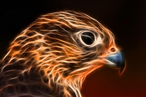 electric falcon by Ulliart