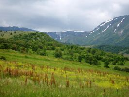 green hills by Erica-Danes