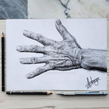 old mans hand by almberger