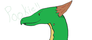 here is Pookie by ECdragon