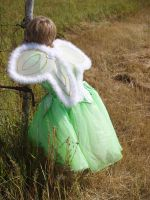 Little Green Fairy by RLDStock