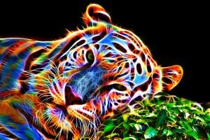 Colorful tiger III by megaossa