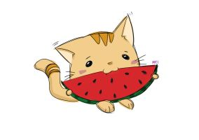 Watermelon Cat by whymeiy