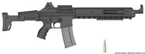 SIG 665 ICWS by Chris000