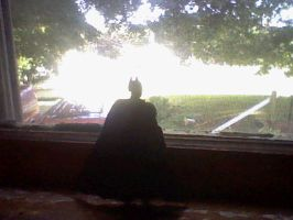 Batman looking out my window. by GothicTaco198