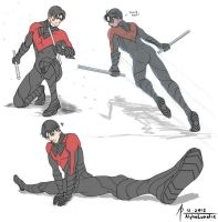 Nightwing Dynamic practice by AlphaLunatic