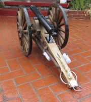cannon rear by tomsealstock