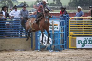 Taupo Rodeo 98 by Sooty-Bunnie