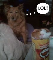 My Puppy Laughs At My Piggie's Pringles Plight by zest1513