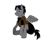 Core Shadow's OC pony design by sbeaumont