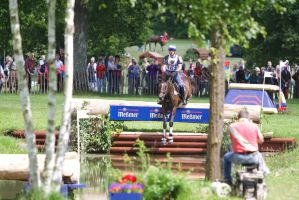 3DE Water Jump Series Bay Horse Pt 1 by LuDa-Stock