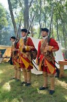 Cannock Chase Military History Weekend 2015 (17) by masimage