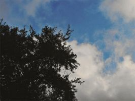 Watching the Clouds Fly by ghostmx