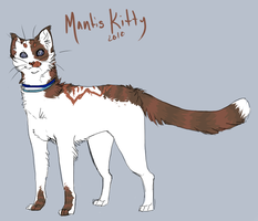 Ref - Mantis Kitty by suchacat