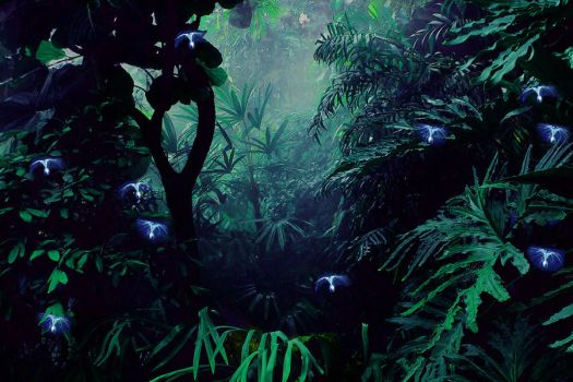 Jungle of Pandora by Maarel