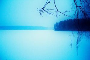 winter evening landscape by paracats