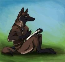 Ava for Canis-Ferox by Falcolf