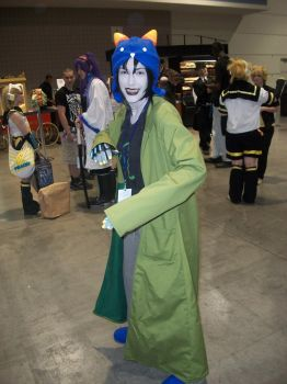ANIMAZEMENT 2012: NEPETTA by RareCandyAddict