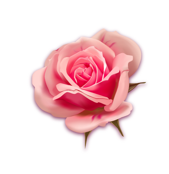 mesh_rose by Expressowl