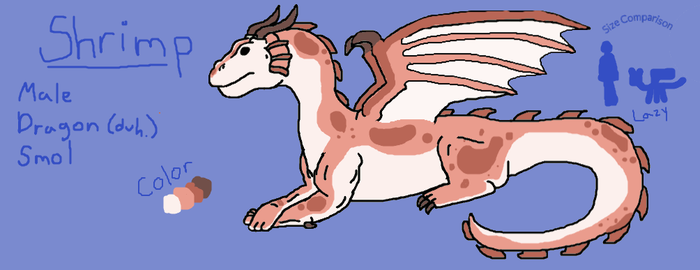 AUCTION: Shrimp the Dragon by KittyCatChaos