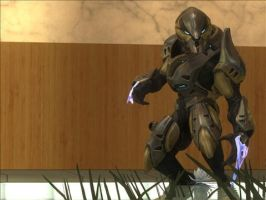 Halo reach elite by crested217