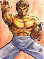 Sketchcard SF4 Fei Long by fedde