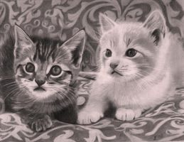 Two kittens on a couch by tsartwork
