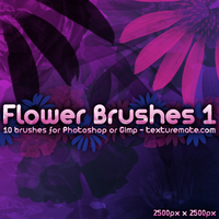 Flower Brushes 1 by AscendedArts