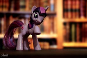 Day 39 - Twili at the Library by zk306