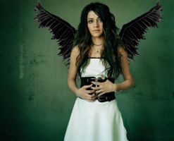Wings of Lacey by vaughnDutch