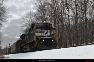 NS P63 by Fritzchen-26