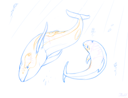 (COM) -Anony- Water Allah -Sketch by AuldBlue