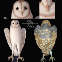 Jareth Plush Barn Owl complete by TheCopperDragon2004