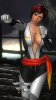 DOA5LR - Mila Fighter Force 02 by MomijiHayabusa