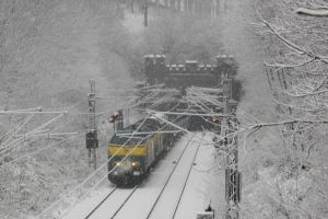 More 55s in Snow by ZCochrane