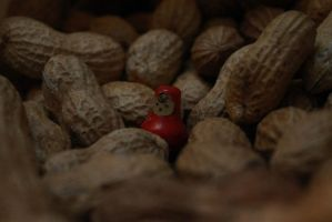 .......my nut friends....:)) by blackbird666999