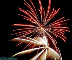 bonfire night 2013 : 16 by IamNasher