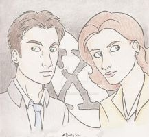 The X-Files-Happy 20th Anniversary!! by The-Winter-Phoenix