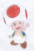 Toad by Schrucy