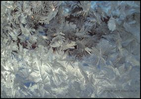 Ice Crystals on Window I by urnightmare