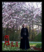 Ali and the blossom by Hext