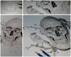 Skull with birds by xhaimiddleton