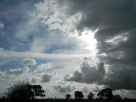 Cloudy Sky with Trees 002 - HB593200 by hb593200