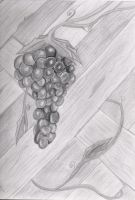Grapes shading practice by VegetarianKitty