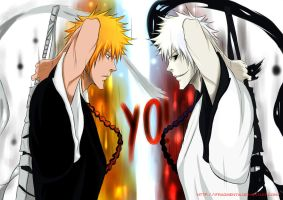 It has been a long time,Ichigo by IFrAgMenTIx