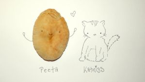 Peeta and Katniss- Tributes from District 12 by Pinkie-Perfect