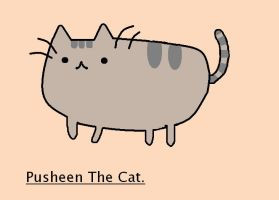 PUSHEEN :D by EdonHarrison